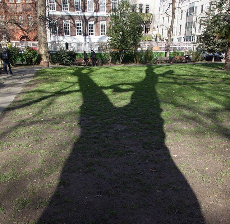 Soho Square: distorted shadows can give you two dancing trees