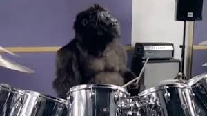Cadburys went out on a limb with their drumming gorilla and were duly rewarded
