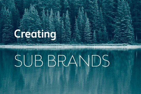Managing and maximising opportunities with sub brands